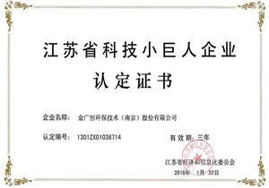 江甦省科技(ji)小(xiao)巨(ju)人企業認(ren)定證(zheng)書